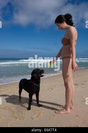 Junge Frau mit einem Tennisball spielen mit schwarzen Labrador Retriever Hund am Strand - Stockfoto