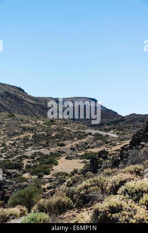 Vulkanlandschaft, Hochebene bedeckt mit Sträuchern, Llano de Uruanca rund um Pico del Teide, Parque Nacional de - Stockfoto