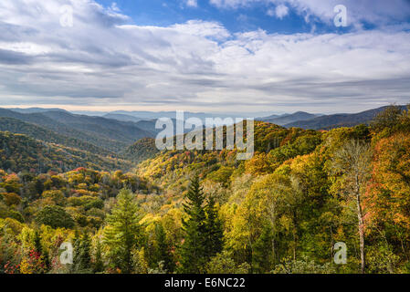 Smoky Mountains in Tennessee, USA. - Stockfoto