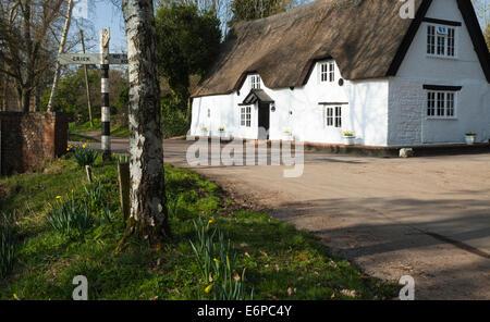 Die winzigen und malerischen Dorf von Winwick in Northamptonshire an einem Frühling Nachmittag. - Stockfoto