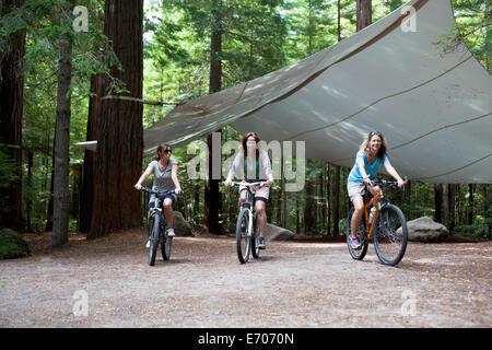 Drei Frauen Mountainbiker Radfahren durch Wald - Stockfoto