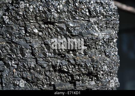 Die einteilige Steinkohle in Nahaufnahme - Stockfoto