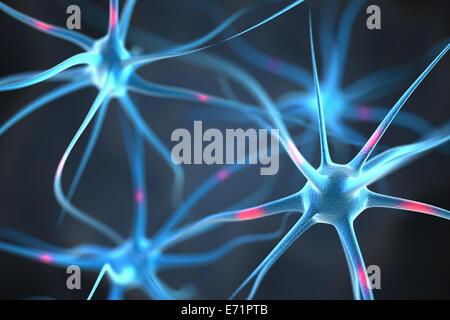 Nervenzellen im Gehirn - Stockfoto