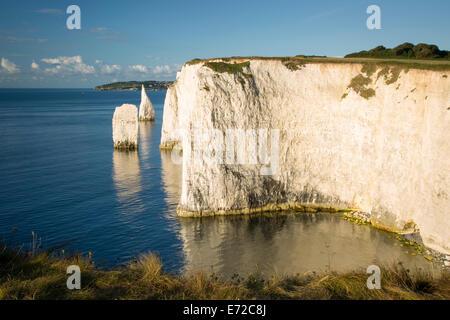 Morgendämmerung am weißen Klippen und Harry Felsen am Studland, Isle of Purbeck, Jurassic Coast, Dorset, England - Stockfoto