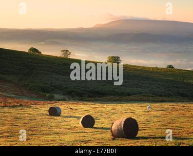 Morgensonne auf Ballen auf walisischen Commonland mit nebligen Ansichten und Heu zu bluffen und die schwarzen Berge - Stockfoto