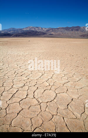 Getrocknete Schlamm in Panamint Valley und Argus Reihe, Death Valley National Park, Salzpfanne, Mojave-Wüste, Kalifornien, - Stockfoto