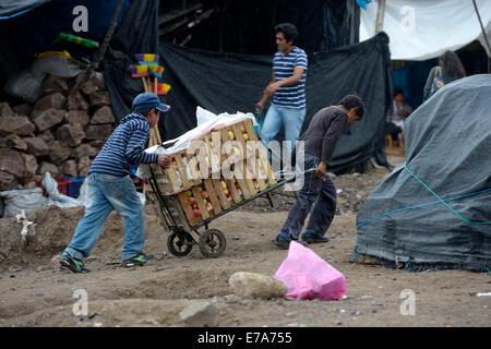 Kinderarbeit, zwei jungen arbeitet als Träger an einen Markt, Ayacucho, Ayacucho Region, Peru - Stockfoto