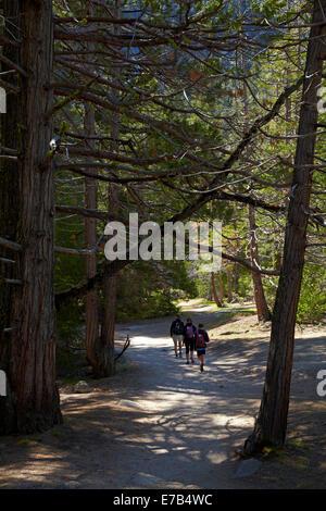 Familie im Wald auf dem Nebel Trail Vernal und Nevada Fall, Yosemite-Nationalpark, Kalifornien, USA - Stockfoto