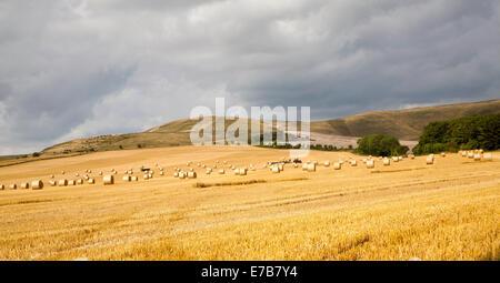 Rundballen Stroh in einer geernteten Ackerfläche auf der Kreide Böschung Piste die Marlborough Downs, Allington, - Stockfoto