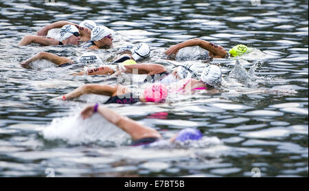Austin, Texas, USA. 26. Mai 2014. Athleten in der Pro weiblichen Kategorie beginnen die schwimmen Teil 2014 Leben - Stockfoto