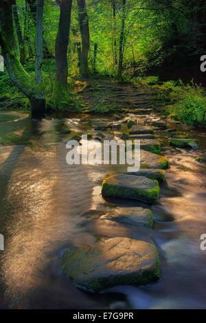UK, South Yorkshire, Sheffield, Rivelin fällt und Stepping Stones - Stockfoto