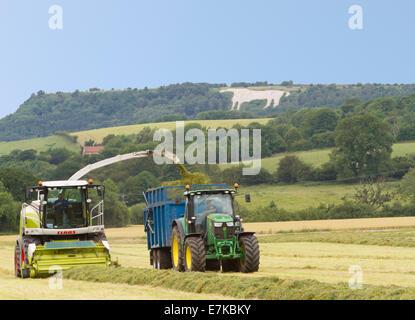 Bauern im Heu zur Erntezeit in North Yorkshire England sammeln - Stockfoto