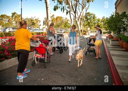 Eine blinde Frau und ihre gelben Labrador Retriever Hund trifft junge Mütter mit Kinderwagen während des Gehens - Stockfoto