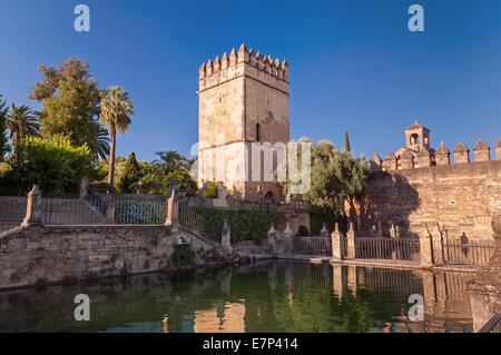 Torre de Los Leones Alcazar Gärten Cordoba Andalusien Spanien - Stockfoto