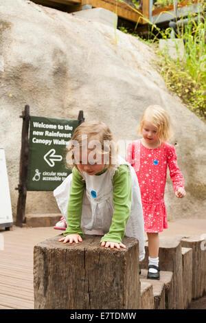 Ein zwei 2 Jahre altes Mädchen / Kind / Kinder / Kleinkinder und ihre vier 4 jährige Schwester zu Fuß / spielen - Stockfoto