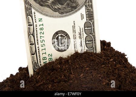 Detailansicht, Flor des Bodens mit hundert-Dollar-Schein, isoliert auf weißem Hintergrund. - Stockfoto