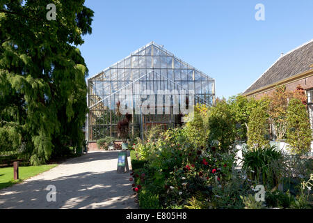 Botanische Tuin Leiden : Tropenhaus im hortus botanicus in leiden holland stockfoto bild