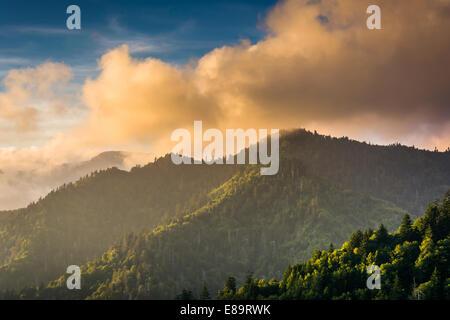 Abendlicht auf die Smokies, gesehen von einem Aussichtspunkt an der Newfound Gap Road in Great Smoky Mountains National - Stockfoto