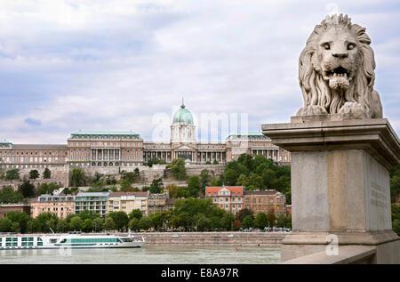 Lion Sculpure der Kettenbrücke über die Donau mit Schloss im Hintergrund, Budapest, Ungarn - Stockfoto