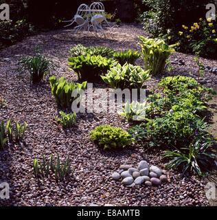 Glatte Runde Kieselsteine Auf Kies Terrasse Mit Neu Entstehenden