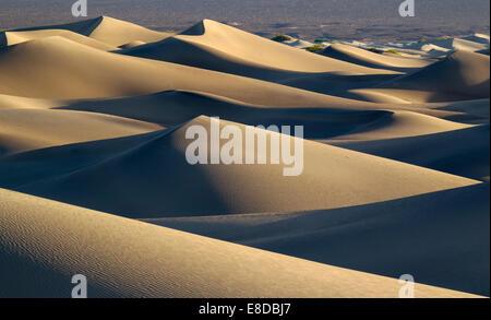 Mesquite flache Sanddünen in den frühen Morgenstunden, Death Valley, Death Valley Nationalpark, Kalifornien, USA - Stockfoto
