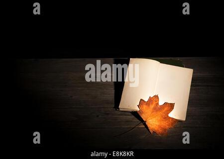 Alte vergilbte leeres Buch und ein Ahornblatt eröffnet in einem dunklen Raum - herbstliche Konzept - Stockfoto