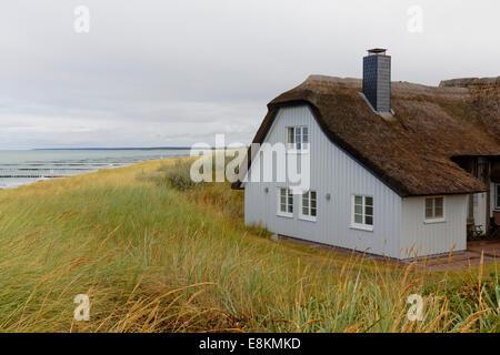 d nen und strand in ahrenshoop deutschland stockfoto. Black Bedroom Furniture Sets. Home Design Ideas
