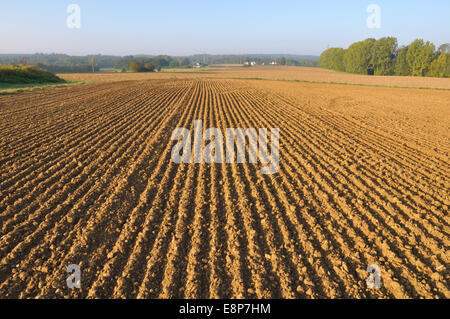 frisch gepflügten Land Feldes Furchen bilden - Stockfoto