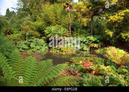 Lost Gardens of Heligan, Mevagissey, Cornwall, England, Vereinigtes Königreich - Stockfoto