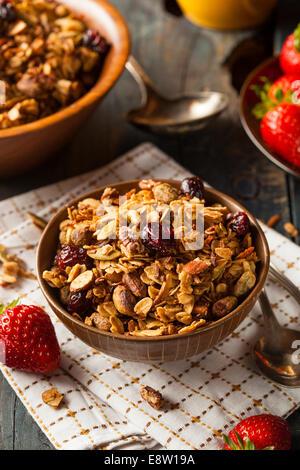 Gesunden hausgemachtem Müsli mit Nüssen und getrockneten Cranberries - Stockfoto