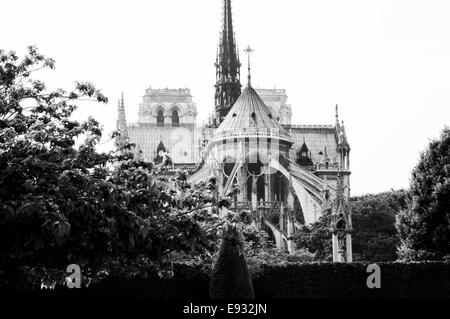 Rückseite von Notre-Dame in schwarz und weiß, Paris, Frankreich - Stockfoto