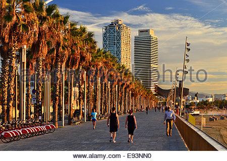 Strandpromenade mit Palmen und Twin towers Torre Mapfre und Hotel Arts im Hintergrund. Port Olimpic Barcelona Spanien - Stockfoto