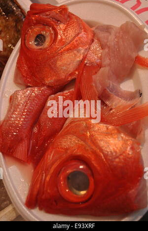 Fisch in Tsukiji Fischmarkt in Tokio Japan - Stockfoto
