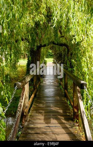 Blick auf kleine hölzerne Fußgängerbrücke unter einer Weide im Garten des alten Palastes - Stockfoto