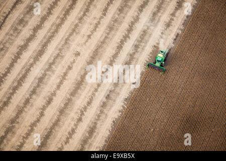 Luftaufnahme von Getreide geerntet. - Stockfoto