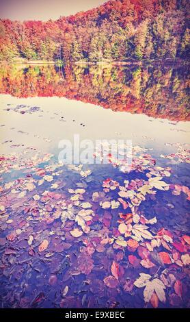 Jahrgang gefiltert Herbstlandschaft mit Reflexion in einem See.