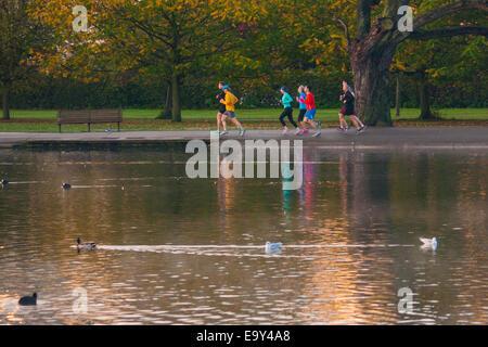 Regents Park, London, UK. 4. November 2014. UK-Wetter. Eine Gruppe von Läufern Sonnen am frühen Morgen im Regents Park. Bildnachweis: Paul Davey/Alamy Live-Nachrichten
