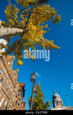 Herbst auf dem Marktplatz in Stadt Nottingham, England UK - Stockfoto