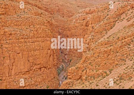 Gebirgsbach, Todra Schlucht oder Todgha Schlucht, Atlas-Gebirge in der Nähe von Tinghir, Souss-Massa-Daraâ Region, - Stockfoto