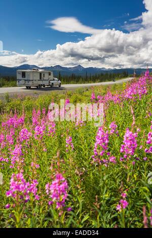 LKW und Wohnmobil reisen auf dem Glenn Highway mit Weidenröschen im Vordergrund, Yunan Alaska. - Stockfoto