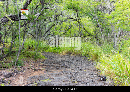 Trail zu Captain Cook Monument Big Island Hawaii USA - Stockfoto