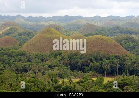 Die Chocolate Hills in Carmen, Insel Bohol, Philippinen, Südostasien - Stockfoto