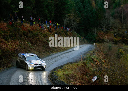Clocaenog, Wales. 14. November 2014. FIA World Rally Championship, Wales Rallye GB. Andreas Mikkelsen und Ola Floene - Stockfoto