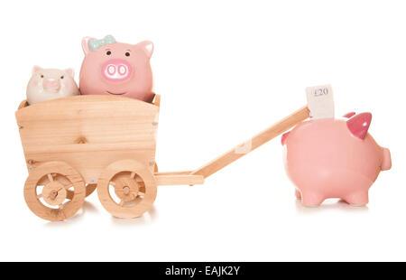 Erbschaftssteuer Sparschweine Studio Ausschnitt - Stockfoto