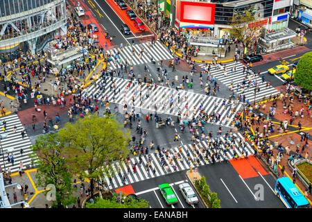 Tokyo, Japan-Ansicht von Shibuya Crossing, einer der verkehrsreichsten Zebrastreifen der Welt. - Stockfoto