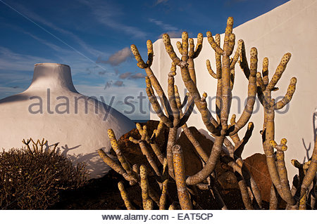 Die Jameos del Agua, einer der sieben Zentren für Kunst, Kultur und Tourismus der Insel Lanzarote. - Stockfoto