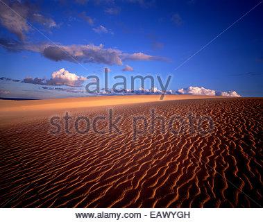 Dünen von Gran Canaria, Spanien - Stockfoto