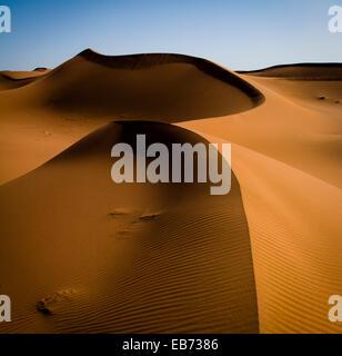 WÜSTE SAHARA SAND DÜNEN ERG ZAR MAROKKO AFRIKA