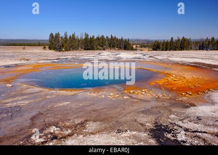 Opal-Pool im Midway Geyser Basin, Yellowstone NP, Wyoming, USA. - Stockfoto