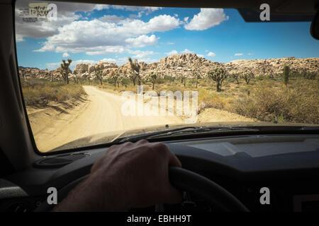 Des Fahrers Hand am Rad des Autos, Joshua Tree Nationalpark, Kalifornien, USA